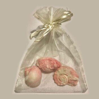 Sea Shells Scents Trio in an Organza Bag