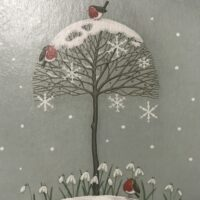 Snowdrops and Robins